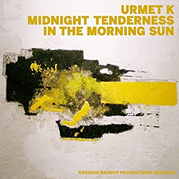Midnight Tenderness / In the Morning Sun
