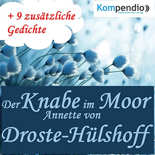 Der Knabe im Moor audiobook cover art