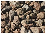 Der Naturstein Garten 10 kg Grill Lava Steine 32-56 mm - Gasgrill Elektrogrill Lavastein Lavasteine Kies Kiesel Aquarium - Lieferung KOSTENLOS