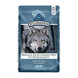 Blue Buffalo Wilderness High Protein Natural Adult Dry Dog Food plus Wholesome Grains, Chicken 24-lb