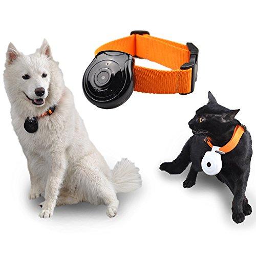 MXBIN 480P Black Dog Cat Puppy Pet Mini Cámara Videocámara Grabadora de...