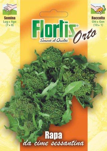 Flortis 4355308 Stängelkohl Cima Di Rapa Sessantina (Stängelkohlsamen)