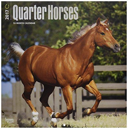 Quarter Horses 2017 Wall Calendar