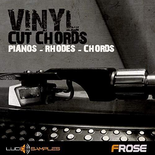 SAMPLES Studio One Cuerdas de vinilo, muestras de vinilo, acordes de vinilo,...