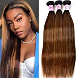 UNice Hair Brown Blonde Straight Human Hair Weave 3 Bundles, Peruvian 100% Virgin Unprocessed Remy Hair Ombre Highlight Color Hair Extensions 100g/pc (8 10 12)