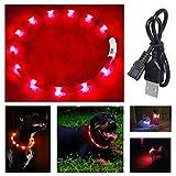 IEMY Collier lumineux pour chien - Réglable en longueur - Rechargeable par USB - 3 modes (rouge)