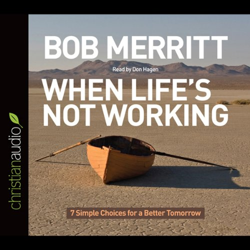 When Life's Not Working audiobook cover art