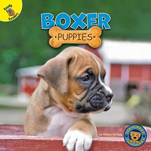 Top Puppies: Boxer Puppies – Rourke NonFiction Reader, Grades PK–2