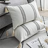 DEZENE Decorative Throw Pillow Covers for Couch Sofa Bed, 2 Pack 100% Cotton Rectangle Lumbar Pillow-Cases with Tassels, Boho Euro Cushion Covers for Farmhouse, Kids, 12 x 20 Inch Black and White