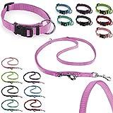 CarlCurt - Classic Line: Hundehalsband & Hundeleine Im Set, Aus Strapazierfähigem Nylon, XS 22-35cm...