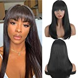 XTREND Wigs
