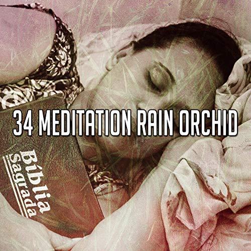 34 Meditation Rain Orchid