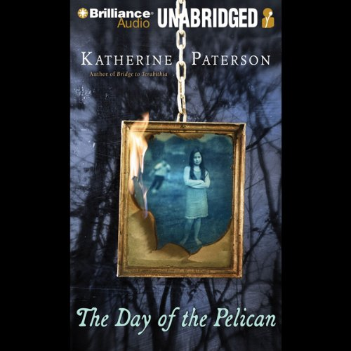 The Day of the Pelican audiobook cover art