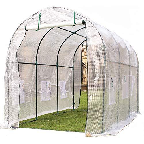 LQQ Tomaten tomatenhaus Großes Begehbares Gartengewächshaus mit 6 Fenstern und 2 Türen, PE-Abdeckung Anbau für Obst Im Freien Gemüse Blumen Pflanzen, 300 × 200 × 200cm