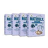 NATRULY Granola BIO de Frutos Secos y Semillas Sin Cereales, Sin Gluten y Sin Azúcar Refinado, Vegana, Sabor Arándanos -Pack 4x325g