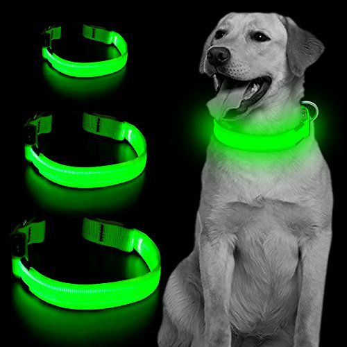 Led Dog Collar, USB Rechargeable Blinking Safety Pet Collar, Perfect for Matching Leash & Harness, for Small Medium Large Dogs by Vizpet (Green, Medium)