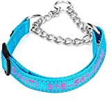 DayDay Patch Martingale Collar ,Personalized Dog Collars with Pet Name and Phone Number Custom Embroidery Stainless Steel Chain Multiple Color 4 Adjustable Collar : X-Small, Small, Medium, and Large