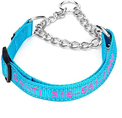 (50% OFF Coupon) Customized Dog Collars $6.49