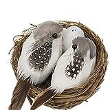 Aiglen 1 Juego De Pájaros De Plumas Realistas(con Nidos Y Huevos De Pájaro), Flores Y Pájaros(para Fiestas En El Jardín), Decoración Del Césped, Accesorios Para El Automóvil Para El Hogar