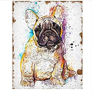 CZYYOU DIY Digital Digital Digital Malen Nach Zahlen Farbigen Pelz Hund Färbung Wandkunst Bild Geschenk - Mit Rahmen - 40x50cm B07PNN3LPK  Gutes Design d5885e