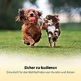 Professioneller Krallenschneider Krallenzange für Hunde von Thunderpaws mit Schutzvorrichtung, Sicherheitsverschluss und Nagelfeile – Geeignet für mittelgroße und große Rassen - 2