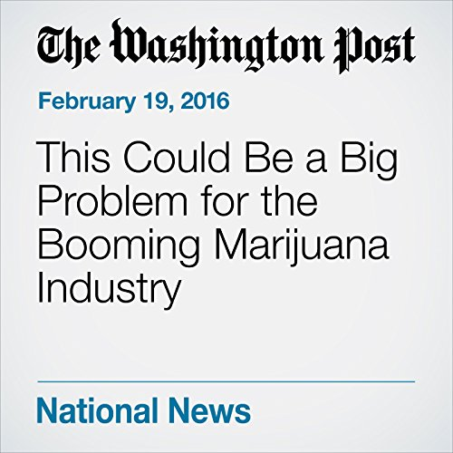 This Could Be a Big Problem for the Booming Marijuana Industry audiobook cover art