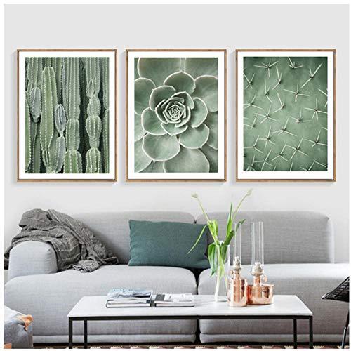 zzxywh Nordic Poster Grün Wandkunst Leinwand Malerei Poster Pflanze Kaktus Poster Und Drucke Wandbilder Für Wohnzimmer Dekoration 50 × 70 cm × 3 Kein Rahmen