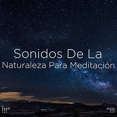 Yoga, Sleep Sounds of Nature & BodyHI