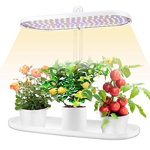 Indoor Garden Led Grow Light:Herb Seeds Kitchen Garden Grow Kit - House Plant Growing Lamps Growing System with Timer