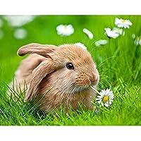 5D DIYダイヤモンド絵画動物ウサギの花ラインストーン刺繡セットダイヤモンドモザイク画像壁画モザイク絵画A8 45x60cm