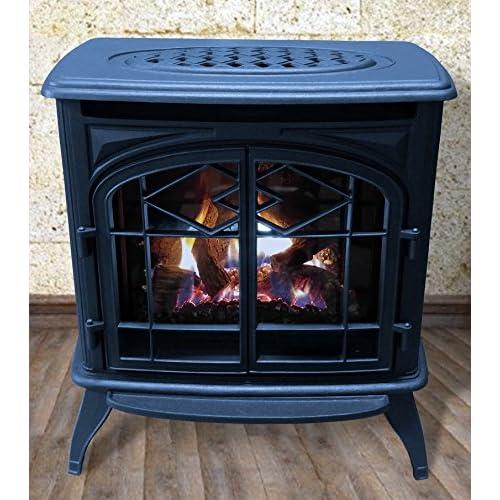 Direct Vent Gas Fireplace Amazon Com