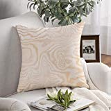 Decorative Square Throw Pillow Case Plywood Texture Nature Normal Material House Washed Natural Wood Pattern Abstract Textures Door Soft Cushion Cover for Bedroom Sofa Couch 16x16 Inch