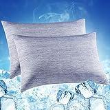 Funda de Almohada de Enfriamiento, LUXEAR 2 Pack 50x75cm con Fibra de Enfriamiento Japonesa Q-MAX 0.55, Transpirable, Suave, Diseño de Cremallera Oculta, Cuidado del Cabello-Azul