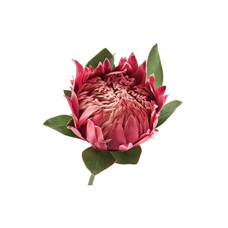 silk flower arrangements fiveseasonstuff king protea real touch silk artificial flowers for wedding bouquet home kitchen 30 inches tall tropical flower arrangements decor 1 stem (light burgandy)