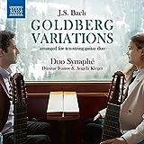 Goldberg Variations, BWV 988 (Arr. for 10-String Guitar Duo): Var. 18, Canone alla sesta