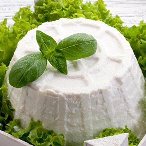 Ricotta best ricotta cheeses