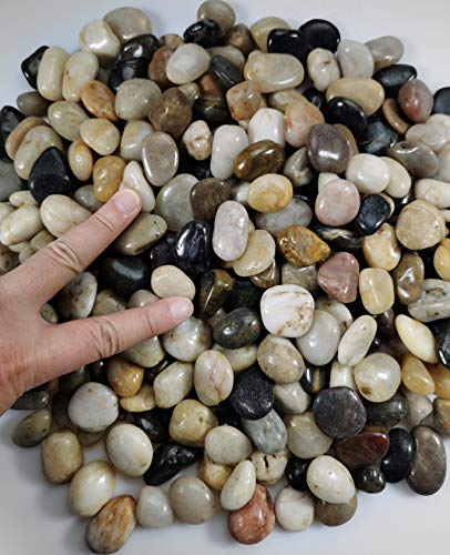 River Rock Stones, Natural Decorative Polished Mixed Pebbles Gravel,Outdoor Decorative Stones for Plant Aquariums, Landscaping, Ponds, and terrariums Vase Fillers (0.6-in Mixed 6 ib)
