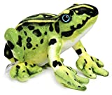 Frisco The Frog - 10 Inch Poison Dart Tree Toad Stuffed Animal Plush - by Tiger Tale Toys