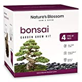 Nature's Blossom Bonsai Tree Seed Starter Kit for Beginner Gardeners. A Complete...