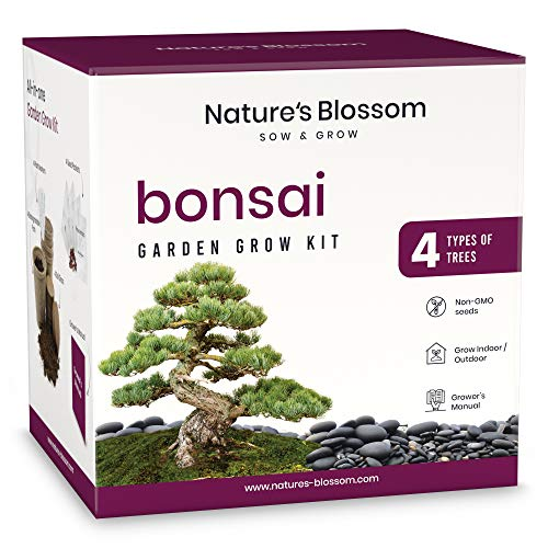 Nature#039s Blossom Bonsai Tree Seed Starter Kit for Beginner Gardeners A Complete Indoor Growing Set Special Garden Gift Idea for Men and Women