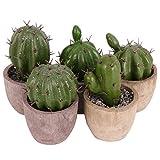 YARNOW 5 Piezas Mini Planta de Cactus Artificial de Cactus Artificial Planta de Escritorio Realista en Maceta Redonda Adorno de Mesa Decorativo para Jardín de Oficina Hoem