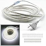 VAWAR Ruban à LED Bande, 4M - Blanc Froid, flexible 2835 144 LEDs/m, éclairage très lumineux - 900 LM par mètre, IP65 étanche, 220V décoration pour Chambre, maison, cuisine, Noël, Fête