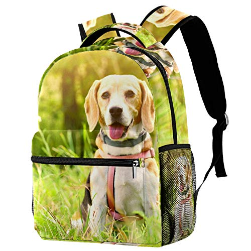 Mochila de viaje para perros y niñas
