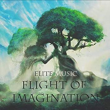 Flight of Imagination