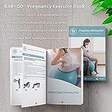 Zoom IMG-1 babygo palla per gravidanza parto