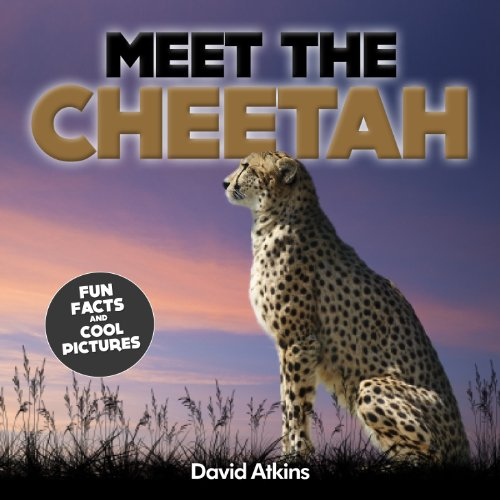 Meet The Cheetah: Fun Facts & Cool Pictures (Meet The Cats) (English Edition)