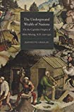The Underground Wealth of Nations: On the Capitalist Origins of Silver Mining, A.D. 1150-1450 (Yale Series in Economic and Financial History)