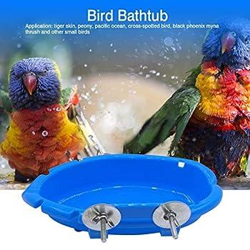 Boîte de Bain pour Oiseaux, Baignoire pour Oiseaux à l'intérieur, Fournitures de Bain pour Perroquet