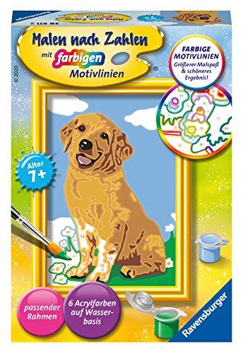 Ravensburger Malen nach Zahlen 28511 - Kleiner Golden Retriever - Für Kinder ab 7 Jahren