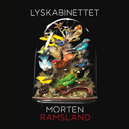 Lyskabinettet cover art